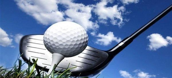 What Is Your Idea Of A Perfect Round Of Golf?